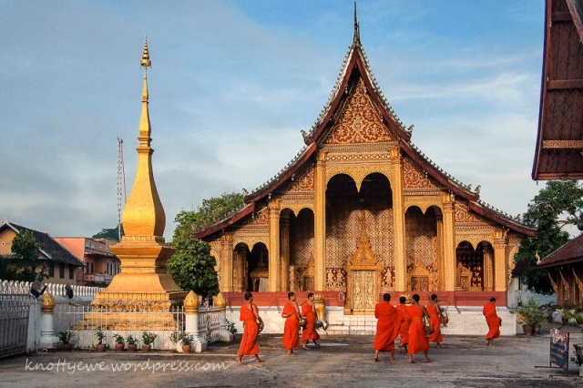 Monks back to temple after receiving alms in the early morning.